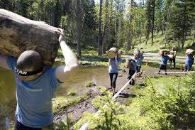Montana info: Weyerhaeuser Co  to Shut Mills, Cedar Palace