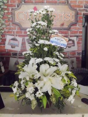 Toko Bunga Citra Florist Jakarta Bunga Daisy Atau Bunga Aster Nan Indah Dan Sederhana