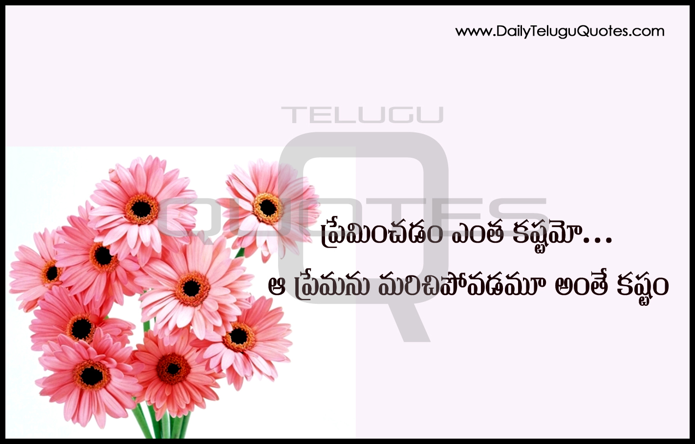 Beautiful Flowers Telugu Quotes About Feelings Of Love Motivational