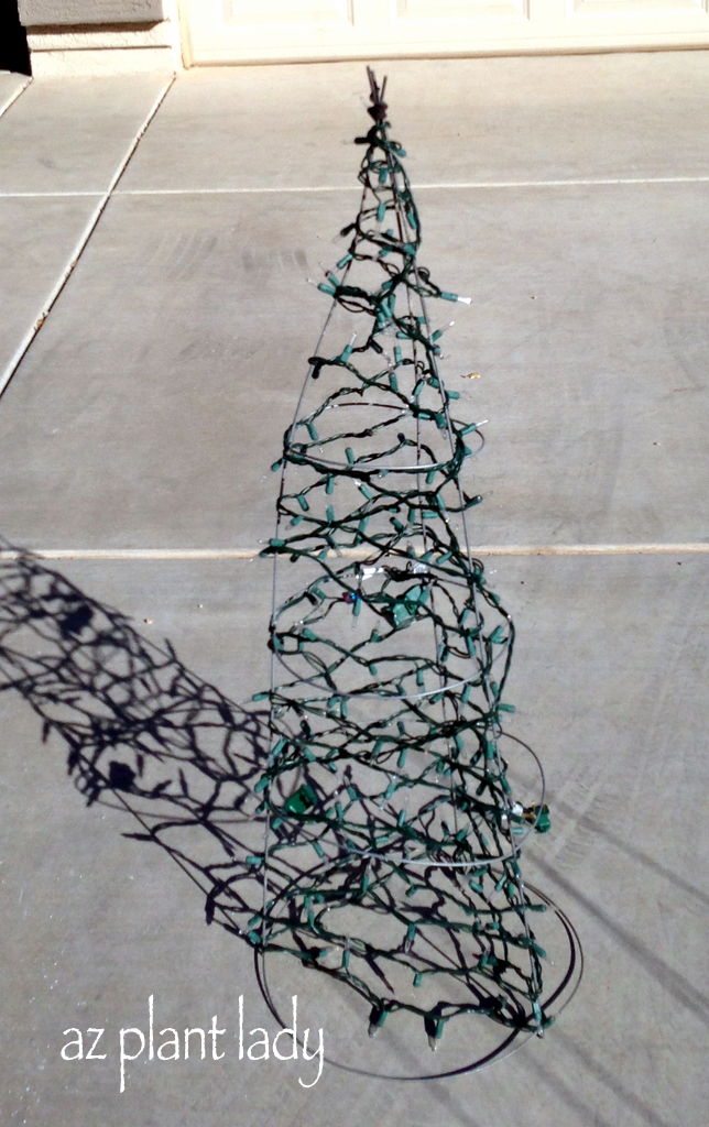 Tomato Cage Christmas Tree.Diy Tomato Cage Christmas Tree Ramblings From A Desert Garden