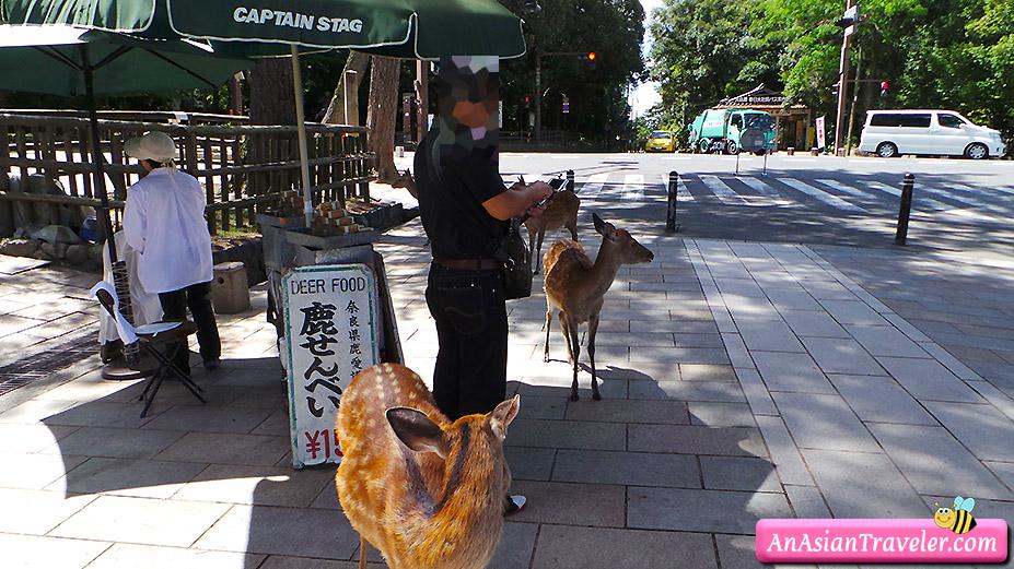 deer food stall