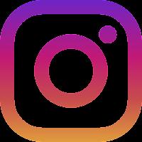 https://www.instagram.com/fleurs53/