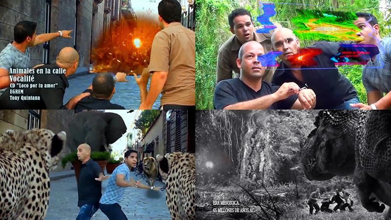 Vocalité - ¨Animales en la calle¨ - Videoclip - Dirección: Tony Quintana. Portal del Vídeo Clip Cubano