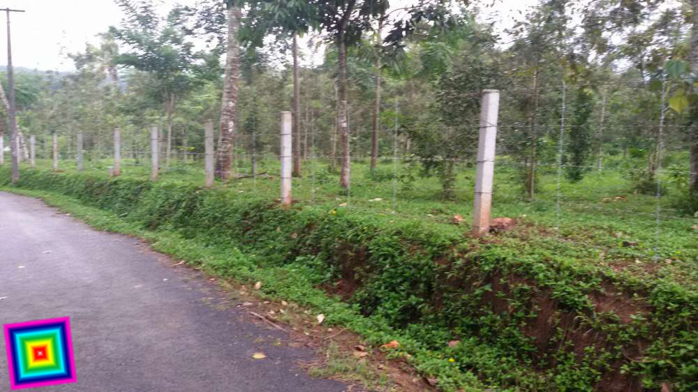 Mananthavady 1 Acre plot for sale 65 lakh Ph: 919562720812 | REAL ESTATE