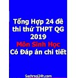 Tổng Hợp 24 đề thi thử THPT QG 2019 môn Sinh học - Có Đáp án chi tiết