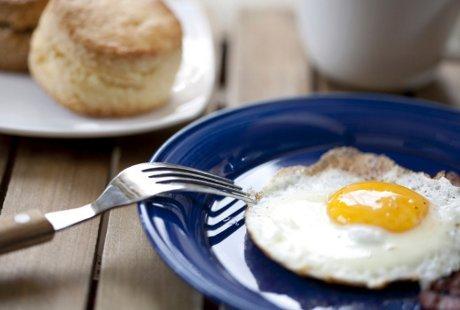 Image result for menyantap telur