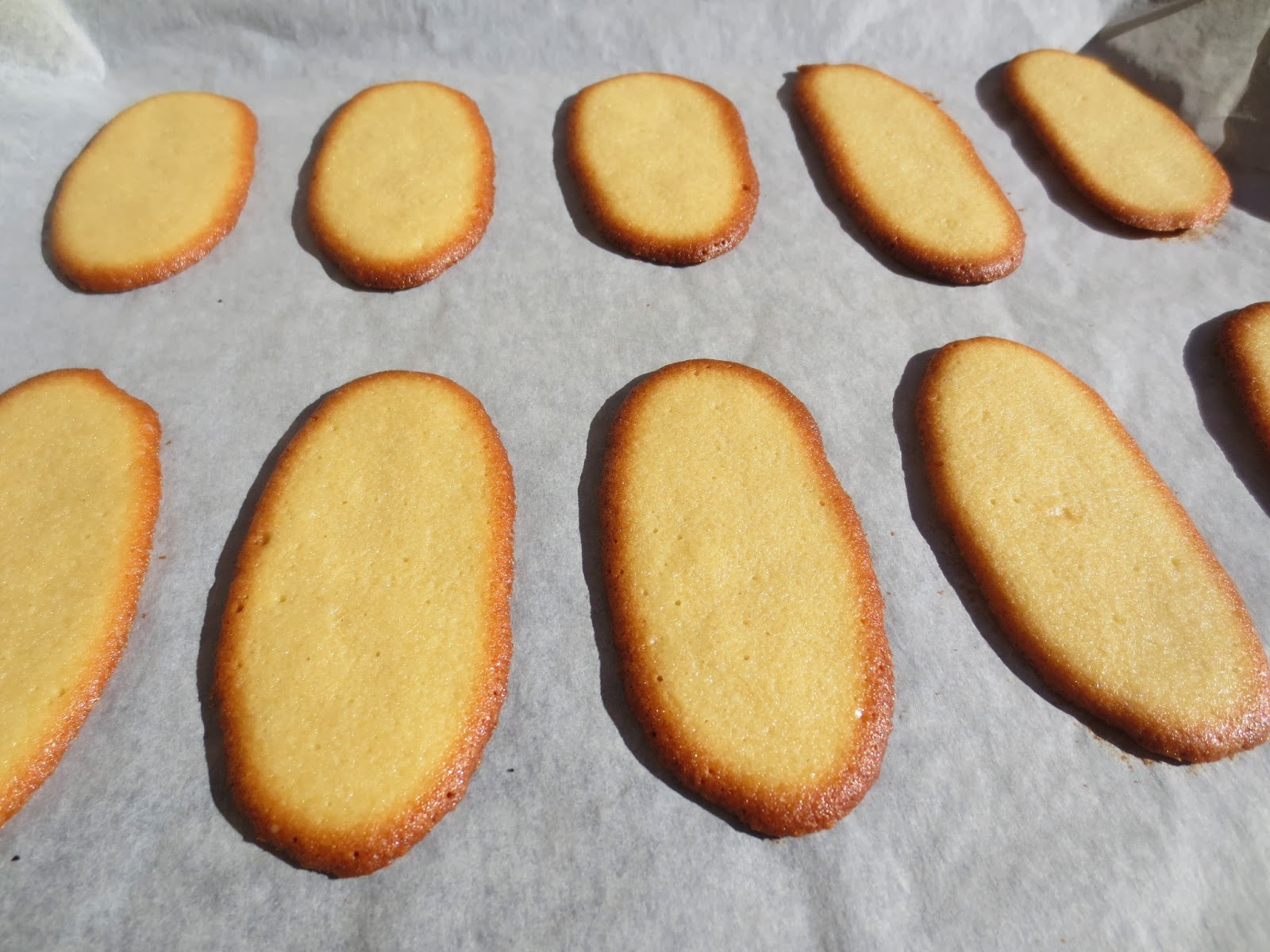 Lenguas de gato Thermomix