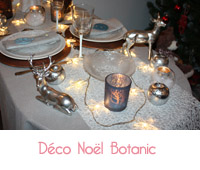 deco noel botanic