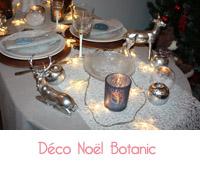 deco de Noël botanic