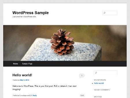 tampilan awal website yang baru anda buat dengan CMS wordpress