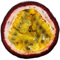 passion fruit illustrations fruit icons