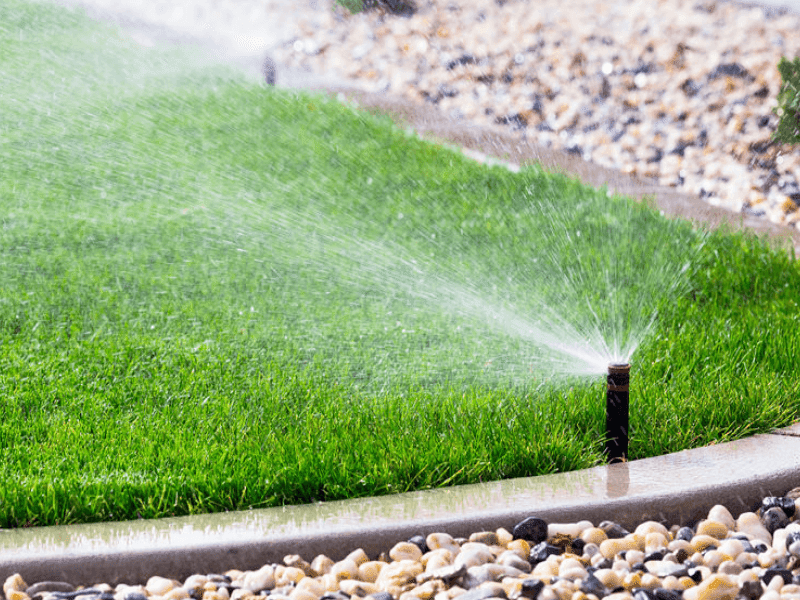 How to Setting up a DIY Water Sprinkler Technique