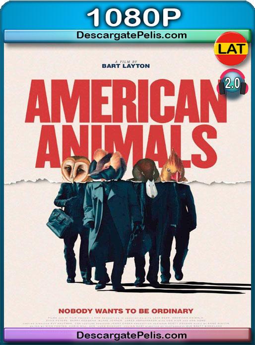 American Animals (2018) 1080P BRrip  Latino – Ingles