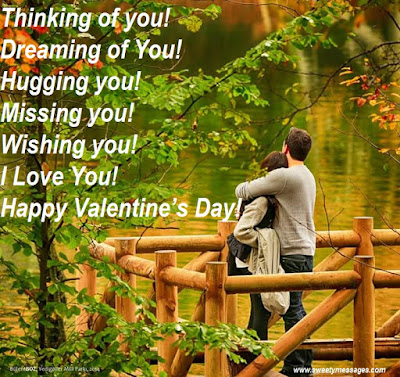 Thinking of you! Dreaming of You! Hugging you! Missing you! Wishing you! I Love You! Happy Valentine's Day!