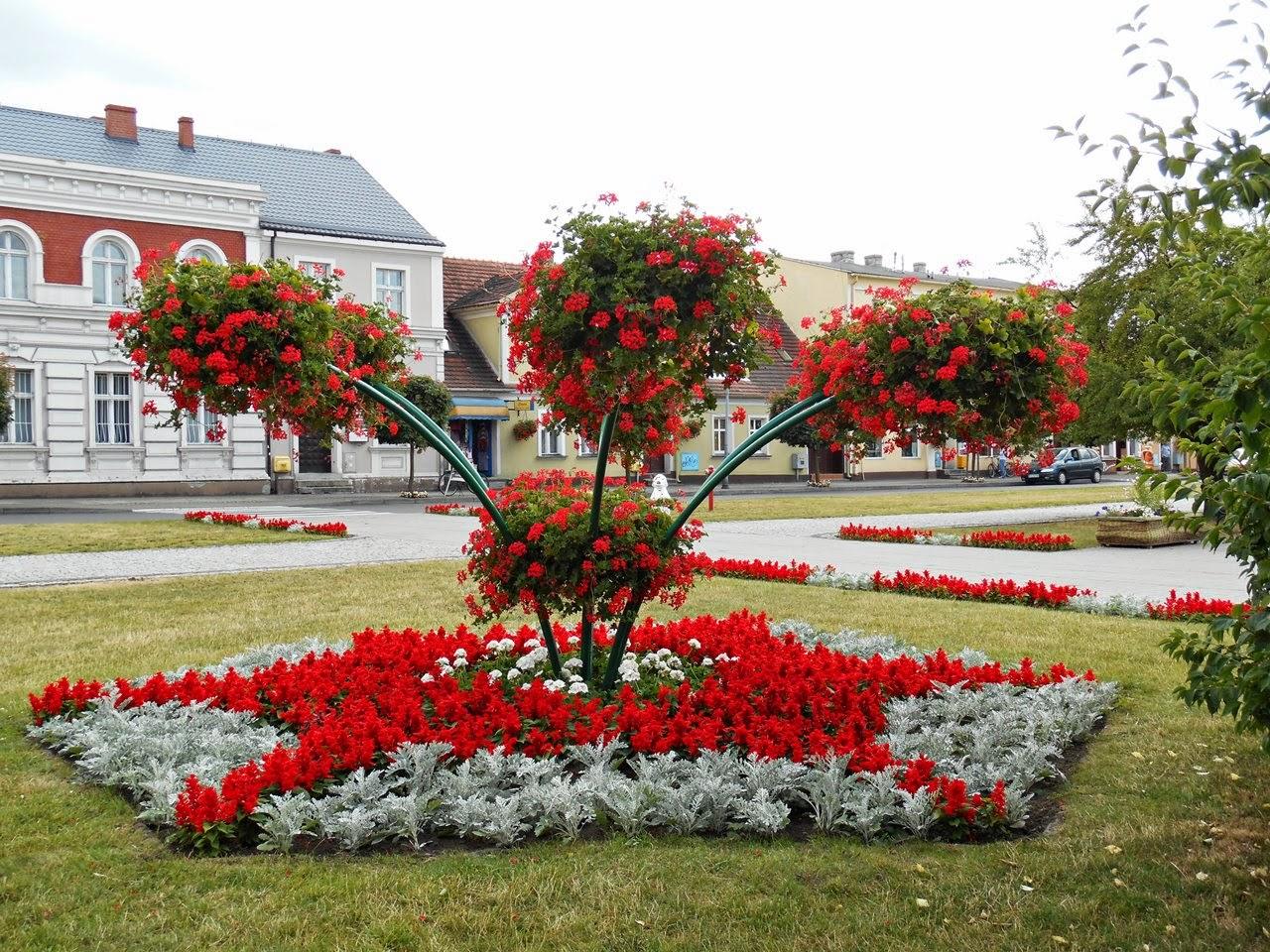 kwiaty, klomby, przyroda