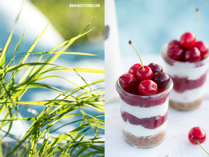 Gras gegen die Sonne fotografiert, Cheesecake in a Jar