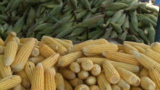 Preço da mão de milho vai de R$ 25 a R$ 40 em JP; veja pesquisa
