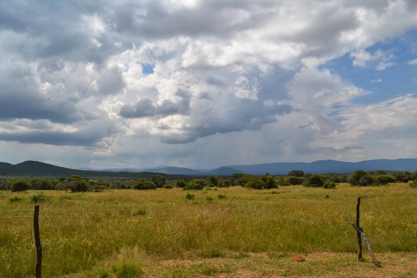 Cloudy sky at Mabula Game Reserve