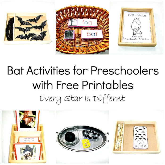 Bat Activitites for Preschoolers