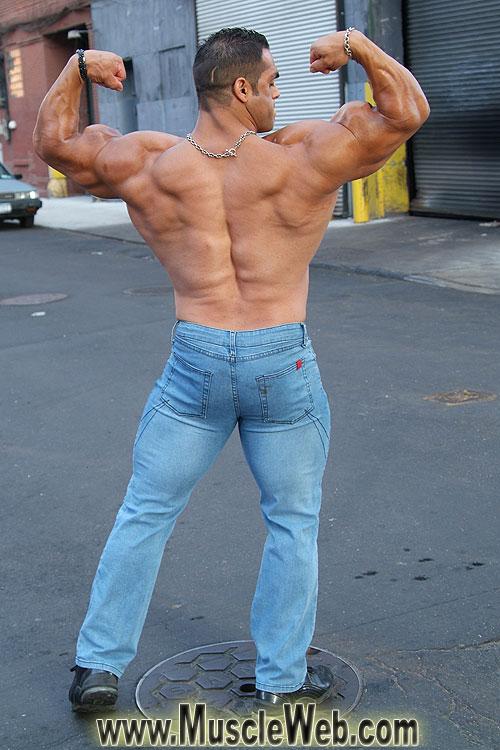 David Hughes | Bodybuilders Workout