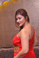 Payal Ghosh Looks Stunning in Red Half Shoulder Gown 056.JPG