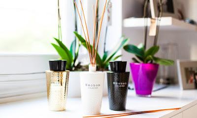 Un mikado con tu aroma favorito puede decorar cualquier estancia