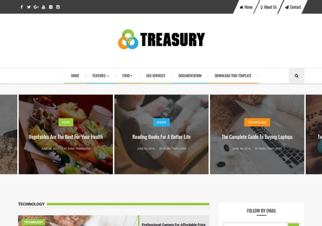 Treasury Pro Blogger Template Blogspot Templates 2019