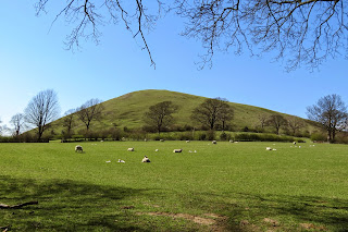 A view of Worsaw Hill from ground level, where it appears conical and bright green against a cloudless sky.