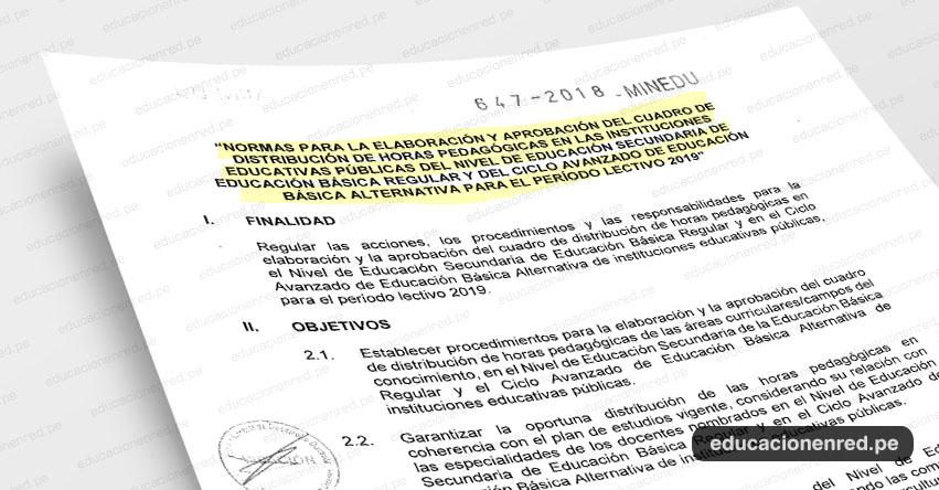 MINEDU publicó Anexos del Cuadro de Distribución de Horas Pedagógicas del Período Lectivo 2019 (R. M. N° 647-2018-MINEDU) www.minedu.gob.pe