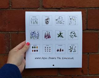 Alice Draws The Line 2018 Wall Calendar back cover