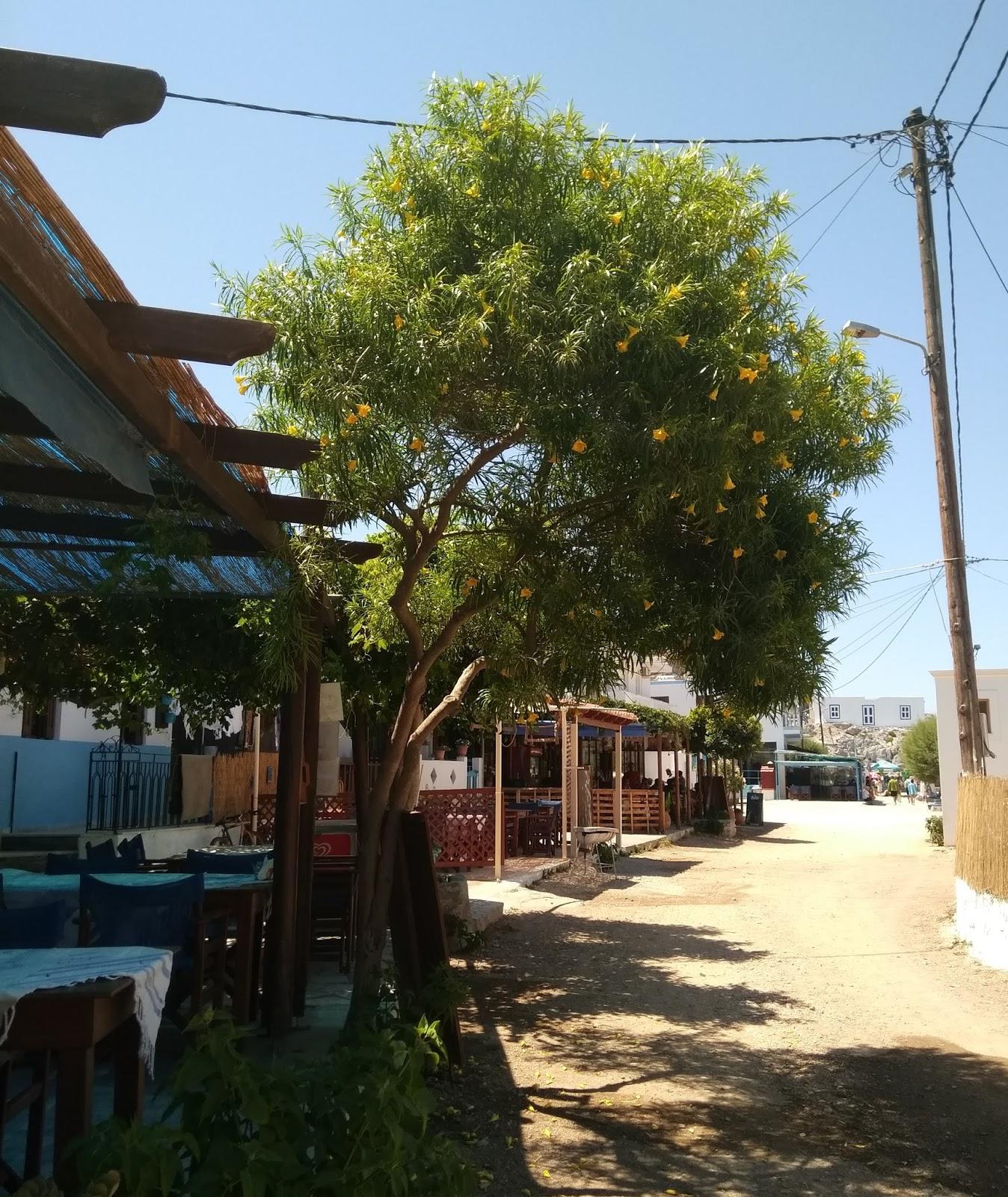 Kos Adası: Hipokrat Havaalanı misafirler için bekliyor 17