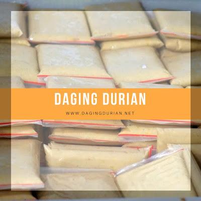 produsen-daging-durian-medan-beku-di_19