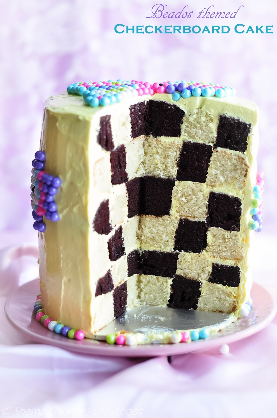 Chocolate Vanilla Checkerboard Cake