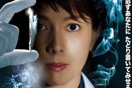 Sinopsis The Woman of S.R.I. Season 12 (2013) - Serial TV Jepang