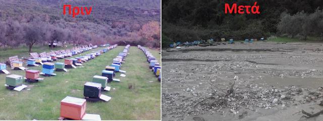 Εφιαλτικές εικόνες και μεγάλες καταστροφές μελισσιών στο Αγρίνιο