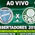 Assistir Godoy Cruz x Palmeiras Ao Vivo 23/07/2019