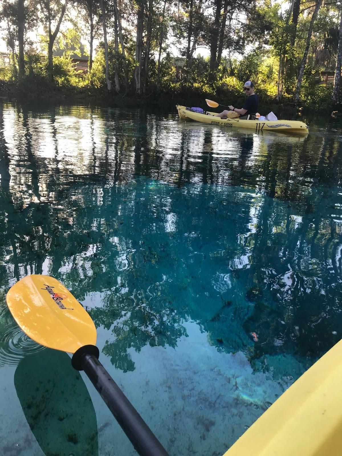 crystal river manatee kayak 10
