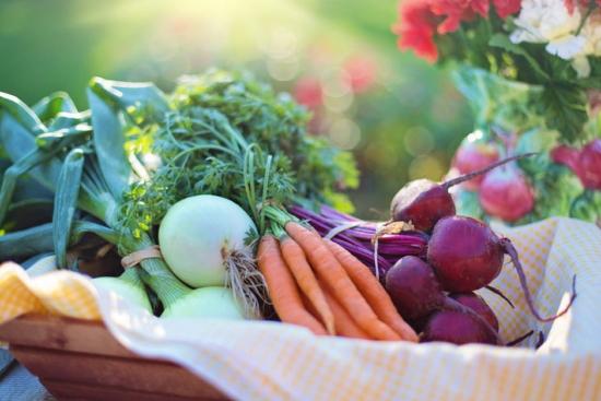 7 HEALTHY LIFE FOOD