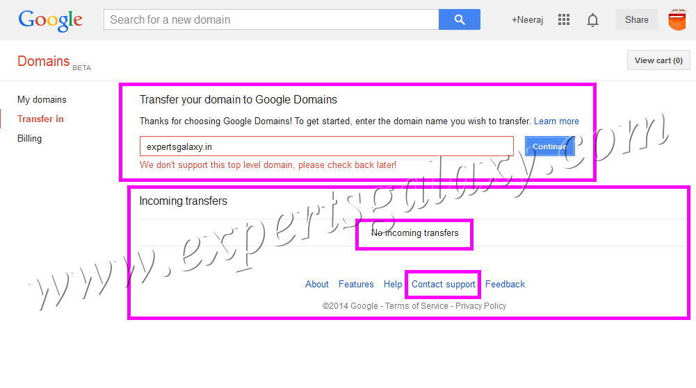 Google Domains Supported Extensions