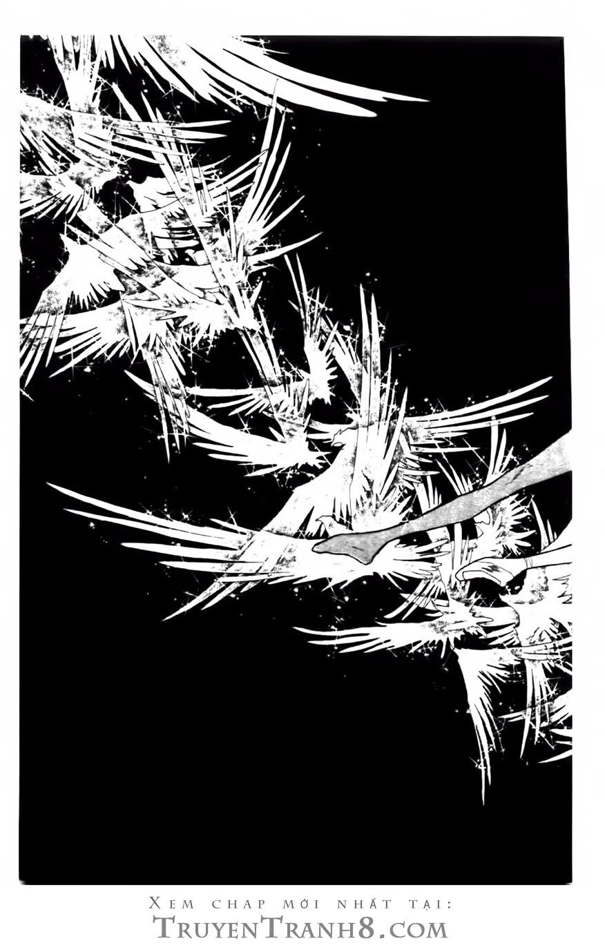 Swan - Vũ Khúc Thiên Nga Chap 81 - Next Chap 82