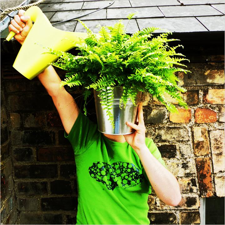 """ponte a """"prueba"""" y adopta una planta"""