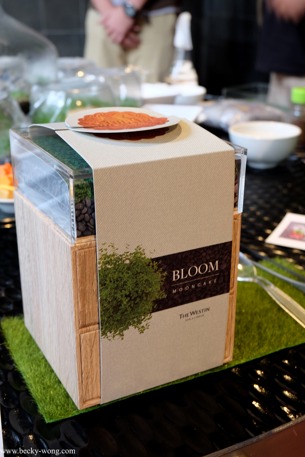 Bloom by the westin kuala lumpur mooncake gift box with diy apart from only having 3000 pieces of these boxes the gift box comes with a pack of diy planting kit where you can plant and decorate your own terrarium solutioingenieria Image collections