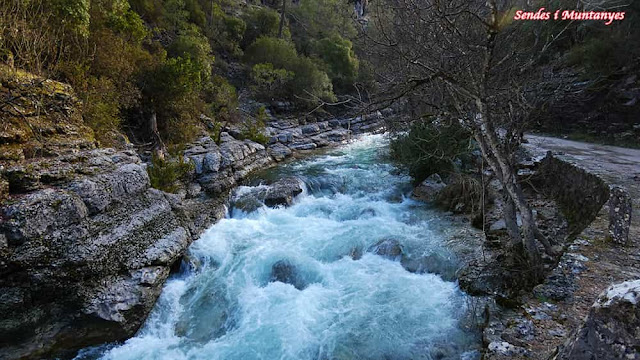 Aguas bravas, río Borosa, Pontones, Sierra de Cazorla, Jaén, Andalucía