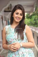 Nikki Galrani at Prema leela pelli gola trailer Launch ~  Exclusive 069.JPG