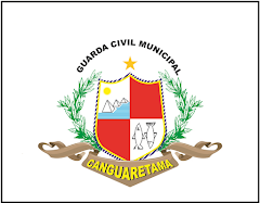 Distintivo GM Canguaretama