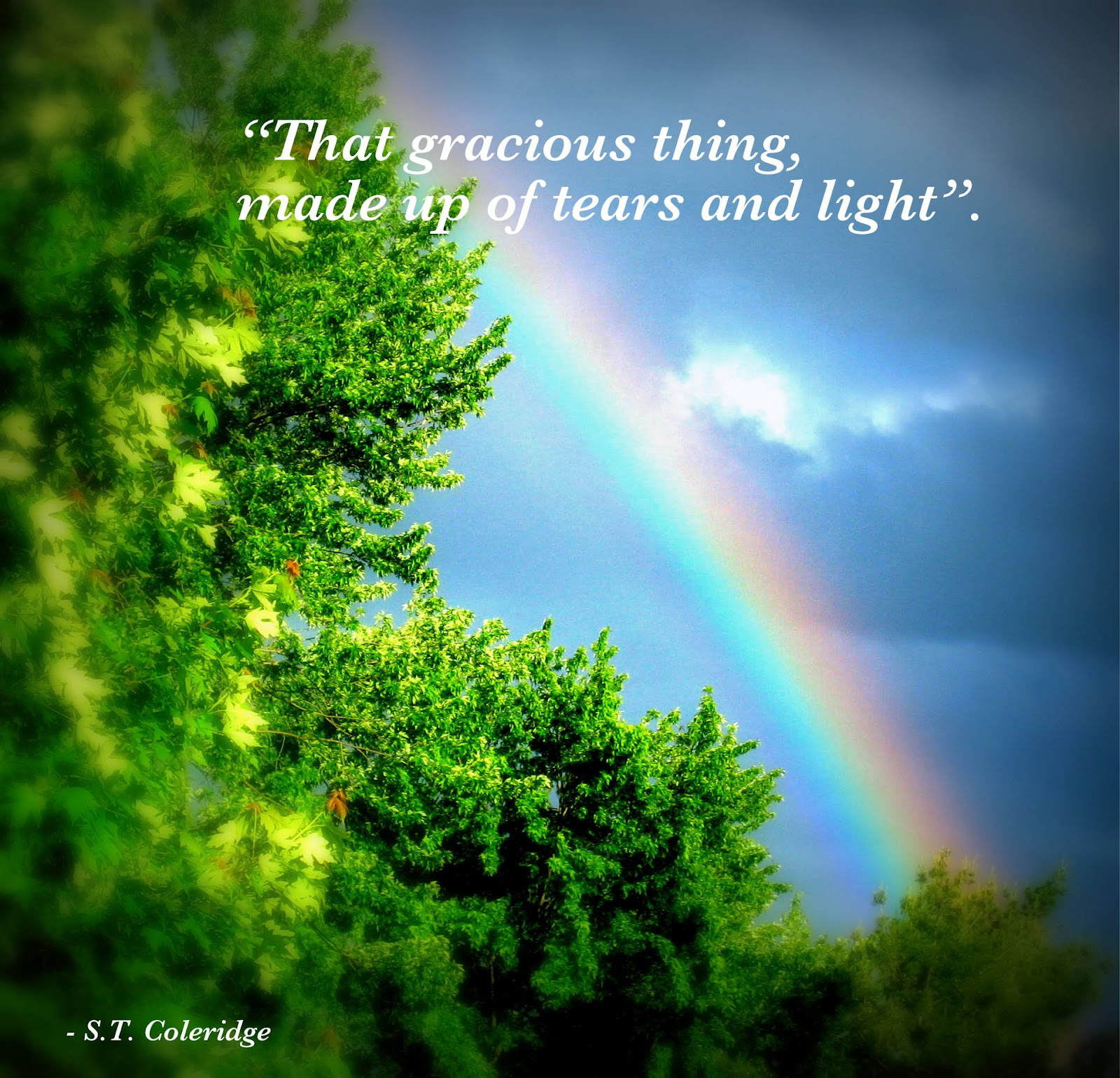 Quotation On Rainbow: Rainbows Quotes. QuotesGram