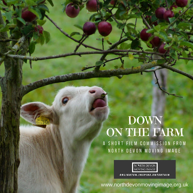 Down on the Farm - A North Devon Short Film Commission