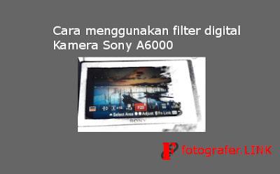 Cara menggunakan filter digital kamera Sony A6000
