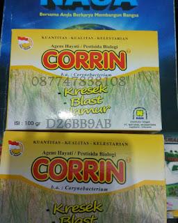 corrin anti krsek blas dan jamur padi
