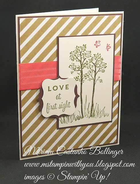Miriam Castanho-Bollinger, #mstampinwithyou, stampin up, demonstrator, mm, anniversary card, in the meadow, first sight, lullaby dsp, label bracket punch, curly label punch, su